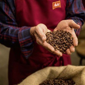 07-2-Melitta-gemahlener-Kaffee-des-Jahres-6-x-500g-Roestkaffee
